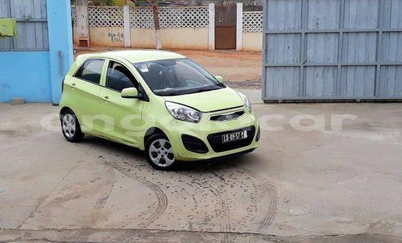 Comprar Importar Kia Picanto Outro Carro em Luanda em Luanda Province