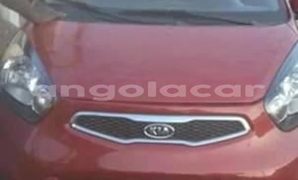 Comprar Importar Kia Picanto Vermelho Carro em Luanda em Luanda Province