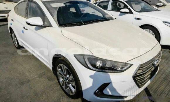 Comprar Importar Hyundai Elantra Branco Carro em Luanda em Luanda Province