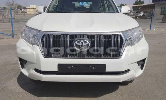 Comprar Novo Toyota Prado Branco Carro em Luanda em Luanda Province