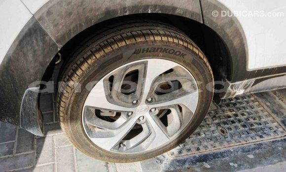 Comprar Importar Hyundai Tucson Branco Carro em Import - Dubai em Bengo Province