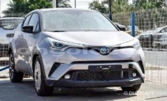 Comprar Importar Toyota C-HR Outro Carro em Import - Dubai em Bengo Province