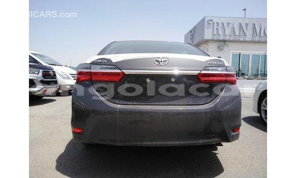 Comprar Importar Toyota Corolla Outro Carro em Import - Dubai em Bengo Province