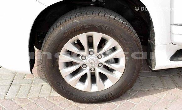 Comprar Importar Lexus GX Branco Carro em Import - Dubai em Bengo Province